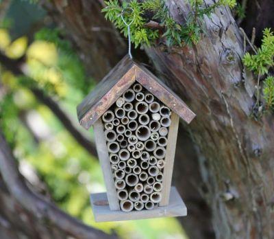 Bee House 2012